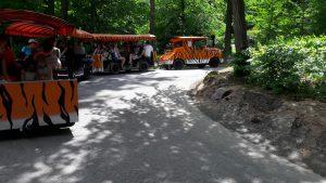 zoo-zlin-bus