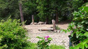 zoo-zlin-nosorozec