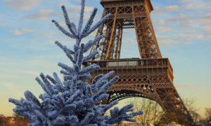 Vánočně z Paříže