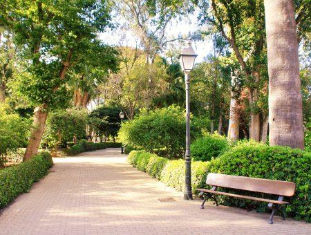 Mesto kvetín, svetla a lásky – Valencia