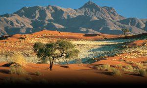 Namibie – ráj pro masožravce