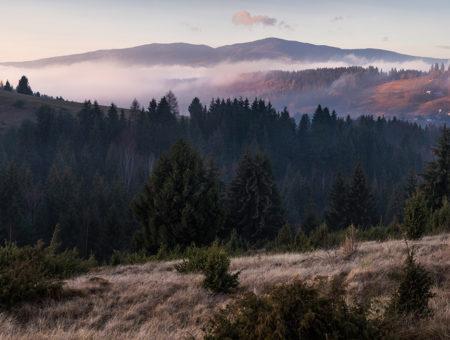 Trochu iný bežecký pretek – Bear Foot Poľana SkyRace
