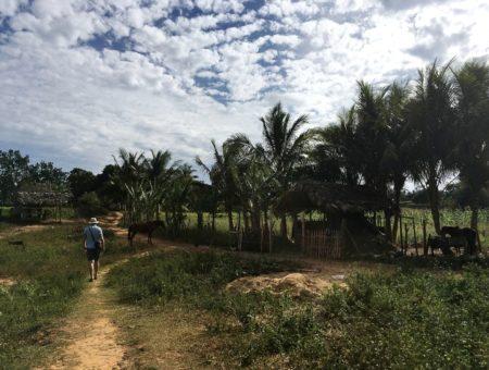 Zo života s horolezcom… a zo života na Kube (časť tretia – Viñales)