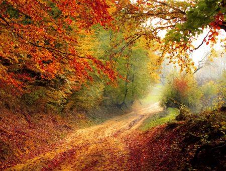10 dôvodov, prečo ísť na jeseň von