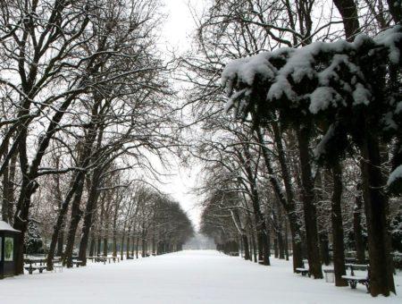 5 zimných aktivít v úžasných luxemburských Ardenach